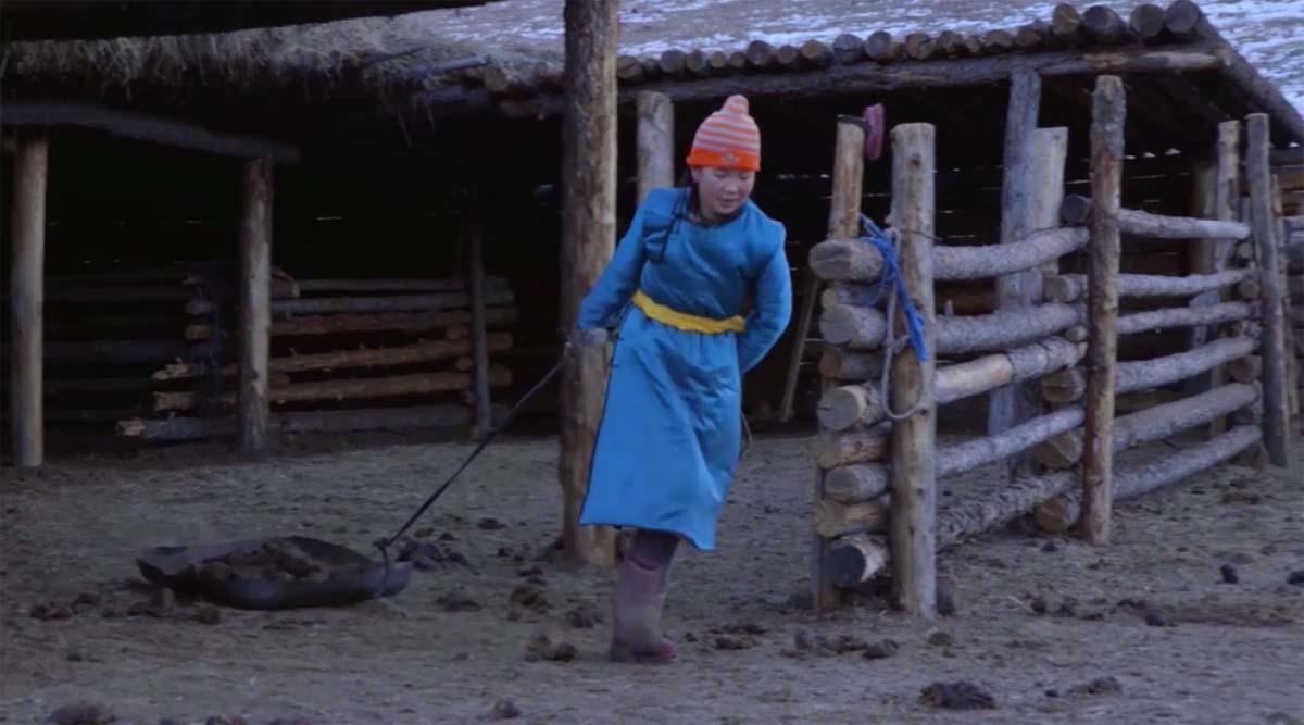 Cachemire-Haut-de-Gamme-Mongolie-Au-fil-du-Monde-11
